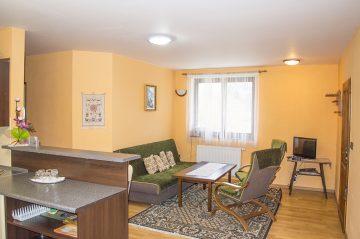 Apartmán spoločenská miestnosť